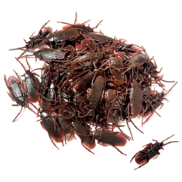 21 01 18 20 01 22 original 600x600 fake roaches