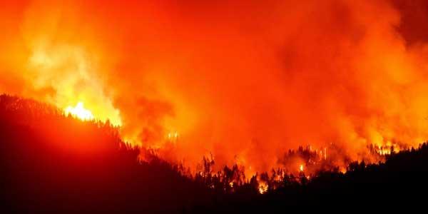Emergency: Wildfires